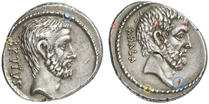 Q. J Brutus.jpg